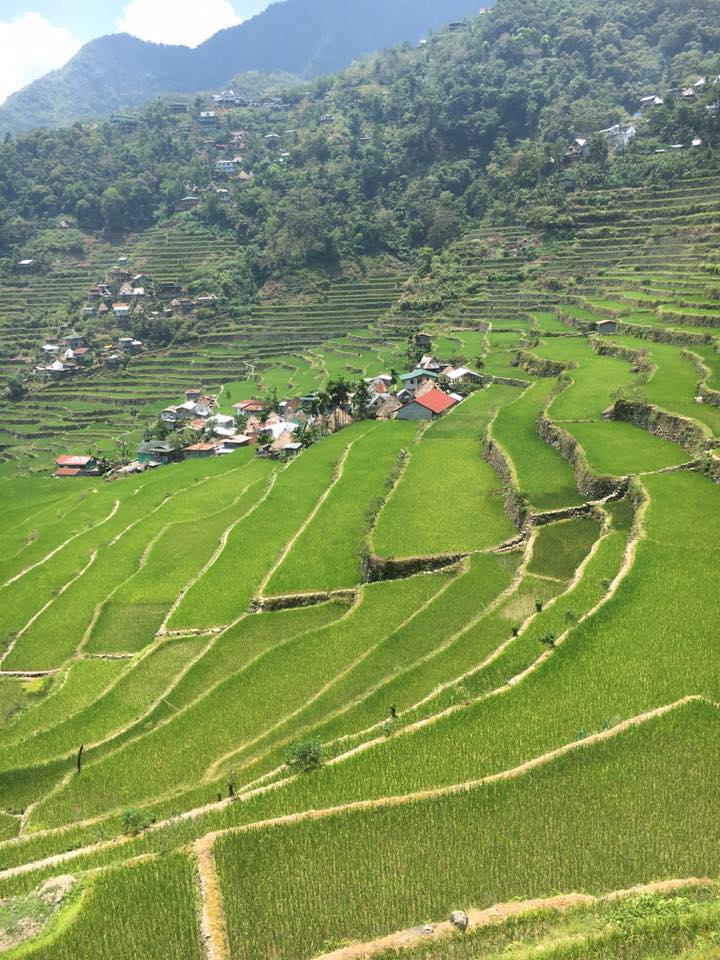 """""""This picture is from the Philippines 🇵🇭! You can't see the water, but these rice fields are full of it and the people living here rely on this water to survive! The people living here do not take their water for granted. They know how important it is and how directly it affects their lives!"""" -Jodi Kirk"""