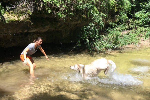 wastewater, dogs, clean water, save water, onion creek, austin, texas